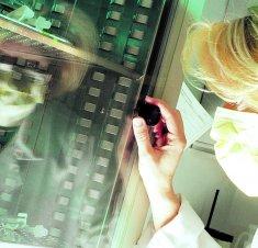 Déjeuner d'information : Saint-Hyacinthe Technopole souhaite aider les entreprises de la filière des sciences de la vie à développer leurs marchés
